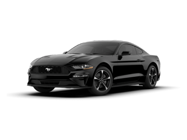 New 2019 Ford Mustang Ecoboost Coupe 1FA6P8TH1K5143069 in Kerrville, TX